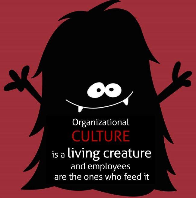 cultura organizațională